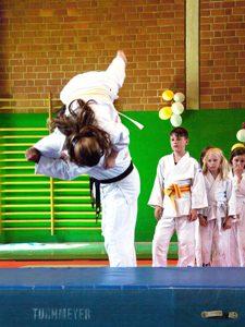 Foto: Judo-Jiu-Jitsu-Vereinigung Hannover von 1928 e.V.